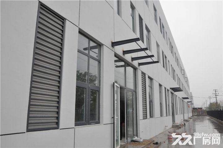 可分租2000,双港新建独院厂房5000平米出租-图(4)