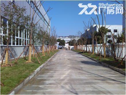 新区梅村3700多平米机械厂房整体出租-图(4)