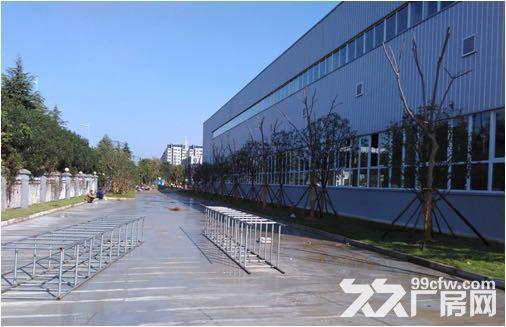 新区梅村3700多平米机械厂房整体出租-图(5)