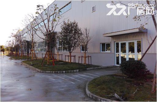 新区梅村3700多平米机械厂房整体出租-图(7)