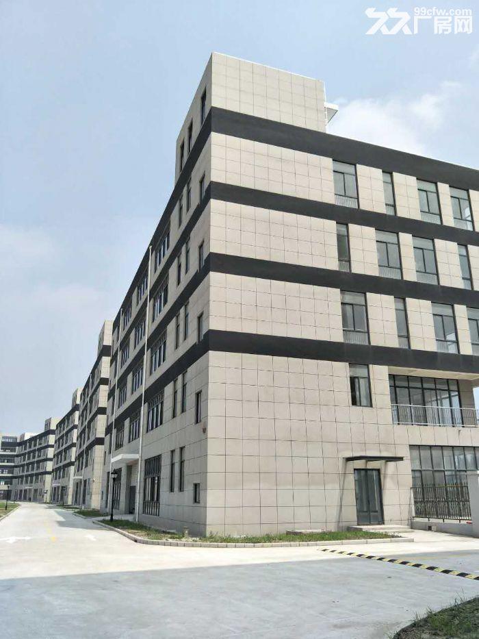 104全新厂房,可环评,形象高大上,可提供政策-图(2)