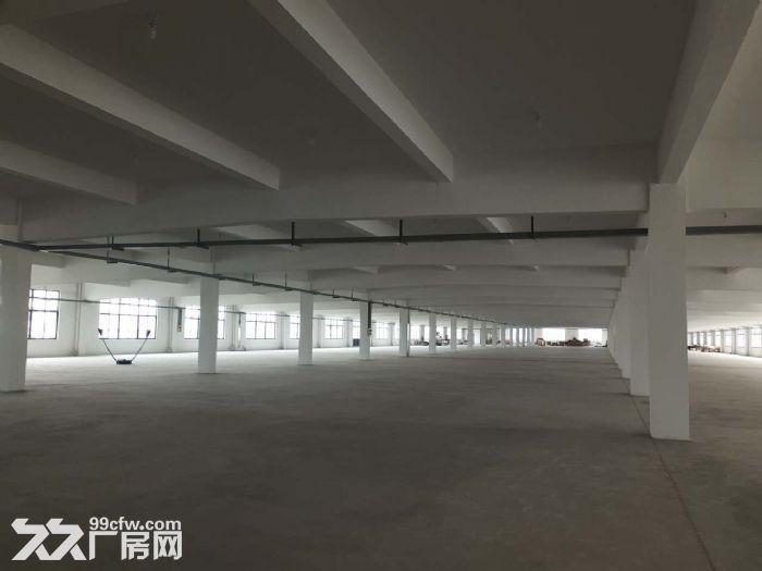 胡埭6000平米漂亮轻工业厂房可分租一半-图(2)