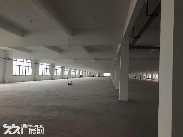胡埭6000平米漂亮轻工业厂房可分租一半-图(3)