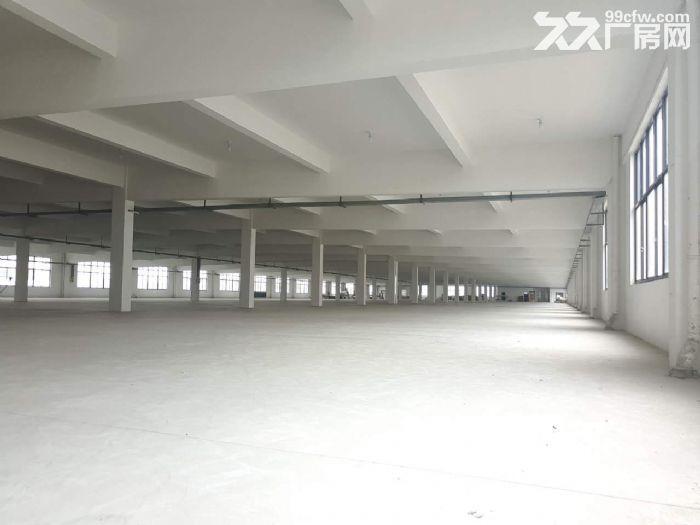 胡埭6000平米漂亮轻工业厂房可分租一半-图(4)