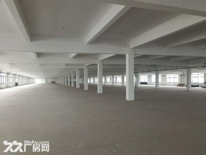胡埭6000平米漂亮轻工业厂房可分租一半-图(5)