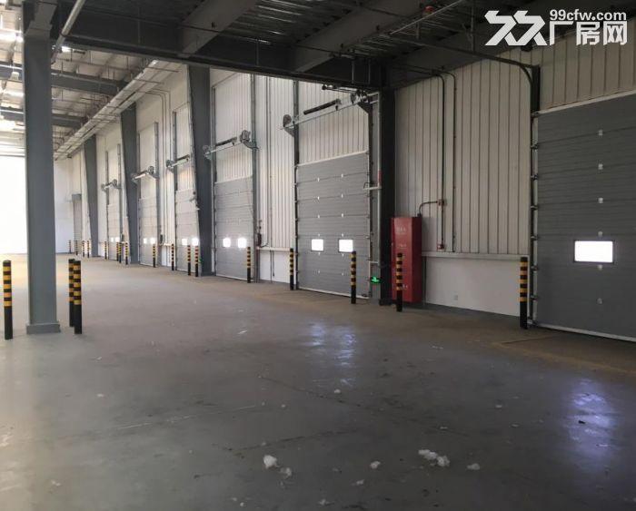 武清开发区30000平米丙二高台仓库出租-图(3)