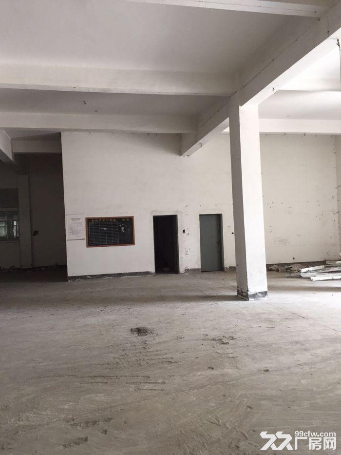 蛟川工业区4500方3层厂房整栋出租独门独院,70万一年可议价-图(3)