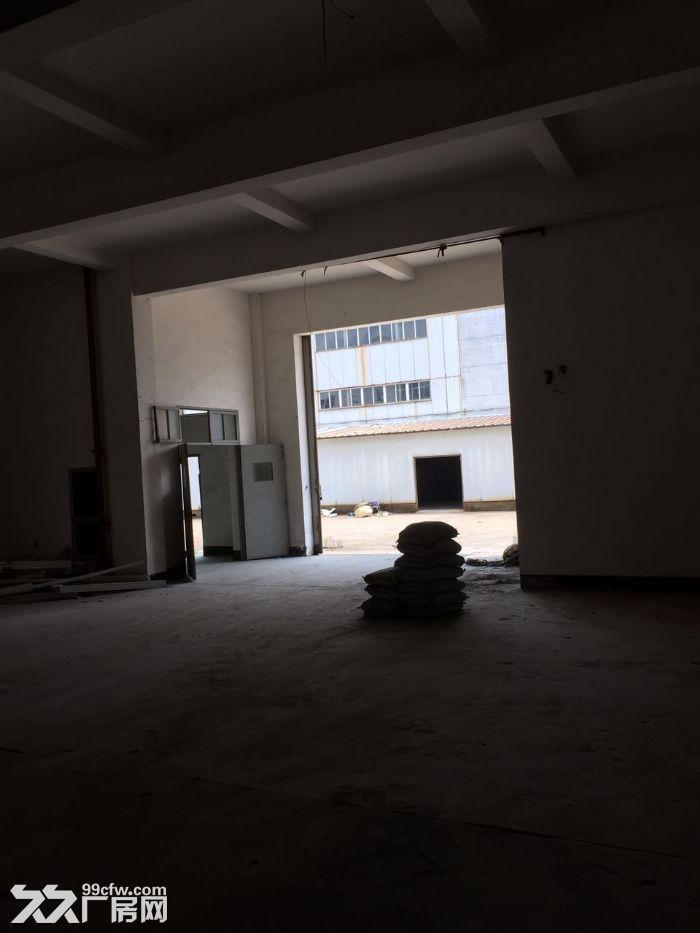蛟川工业区4500方3层厂房整栋出租独门独院,70万一年可议价-图(4)