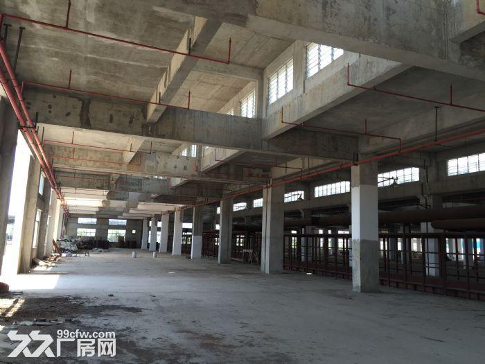 韶关白土工业园厂房出售-图(8)