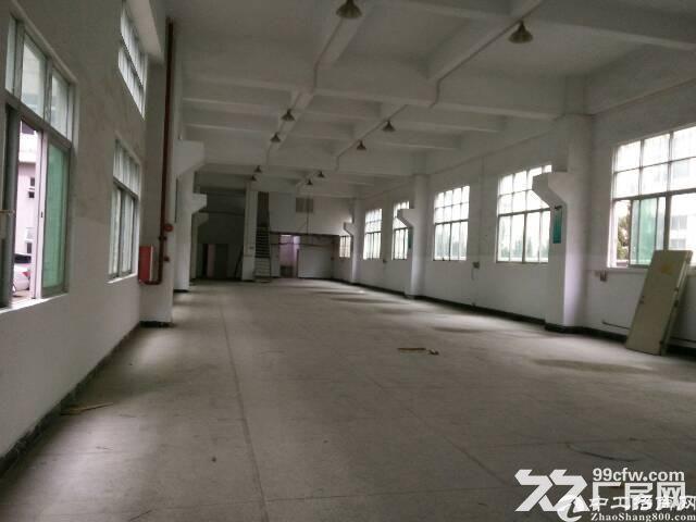 长安镇涌头村独院三层厂房12000平米出租大小可分租-图(3)