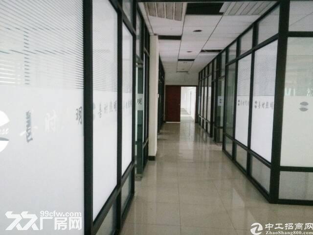 长安镇涌头村独院三层厂房12000平米出租大小可分租-图(4)