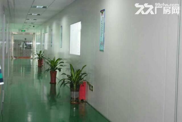 长安新出原房东无尘车间2000平方出租-图(1)