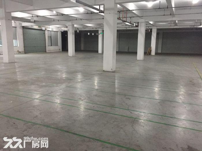 滨文路一楼1200方,层高6米,适合展厅摄影科技类-图(1)