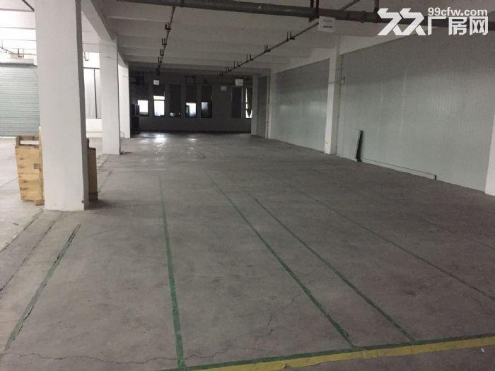 滨文路一楼1200方,层高6米,适合展厅摄影科技类-图(2)