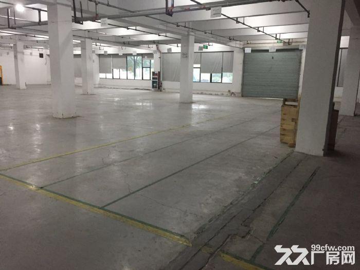 滨文路一楼1200方,层高6米,适合展厅摄影科技类-图(5)
