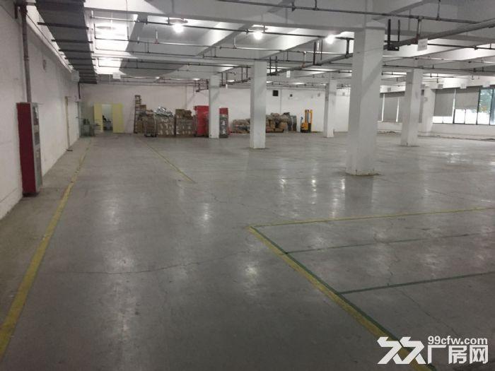 滨文路一楼1200方,层高6米,适合展厅摄影科技类-图(6)