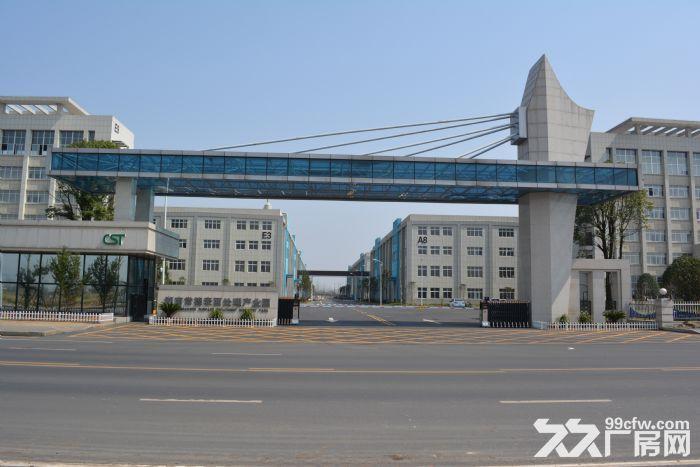 湖南常德表面处理产业园(园区招商)-图(1)