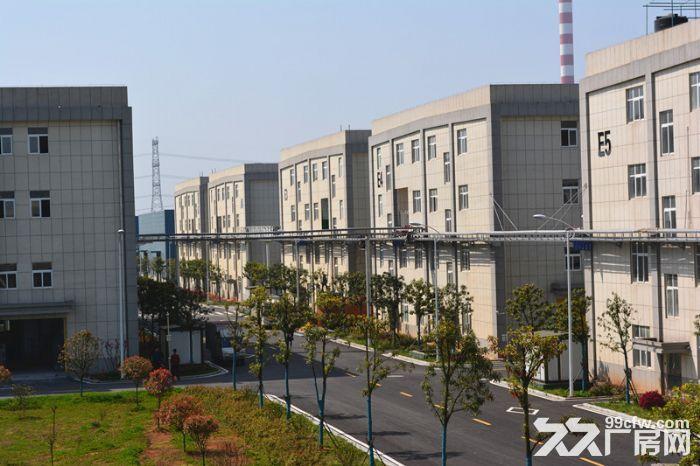 湖南常德表面处理产业园(园区招商)-图(4)