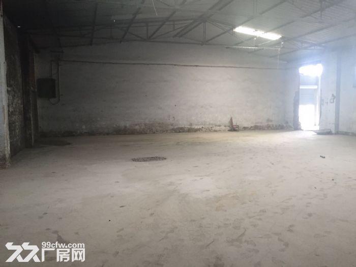 高坎1300标准厂房出租啦-图(1)