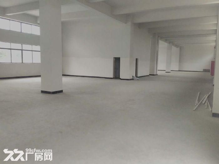 睦洲新沙5000方全新厂房招租(最便宜厂房)-图(3)