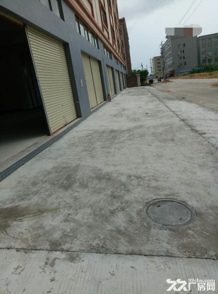 睦洲新沙5000方全新厂房招租(最便宜厂房)-图(1)