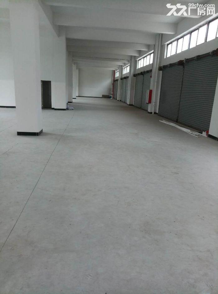 睦洲新沙5000方全新厂房招租(最便宜厂房)-图(2)