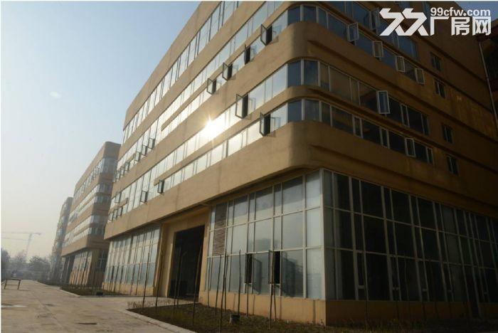河北怀特集团装备制造产业园区8万平米全新厂房出售出租-图(3)