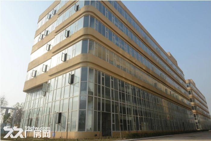 河北怀特集团装备制造产业园区8万平米全新厂房出售出租-图(4)