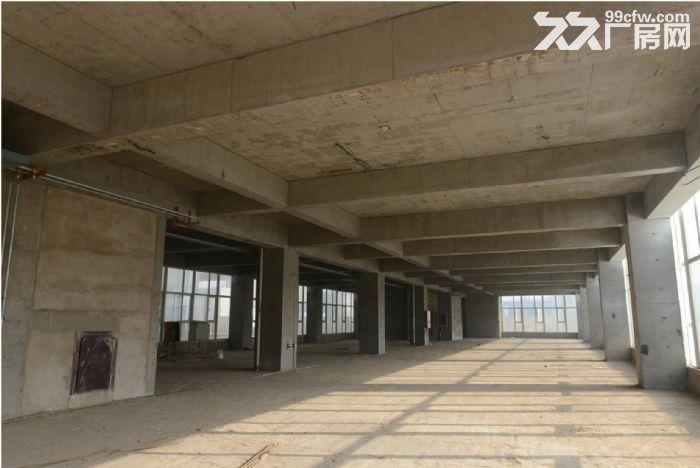 河北怀特集团装备制造产业园区8万平米全新厂房出售出租-图(5)