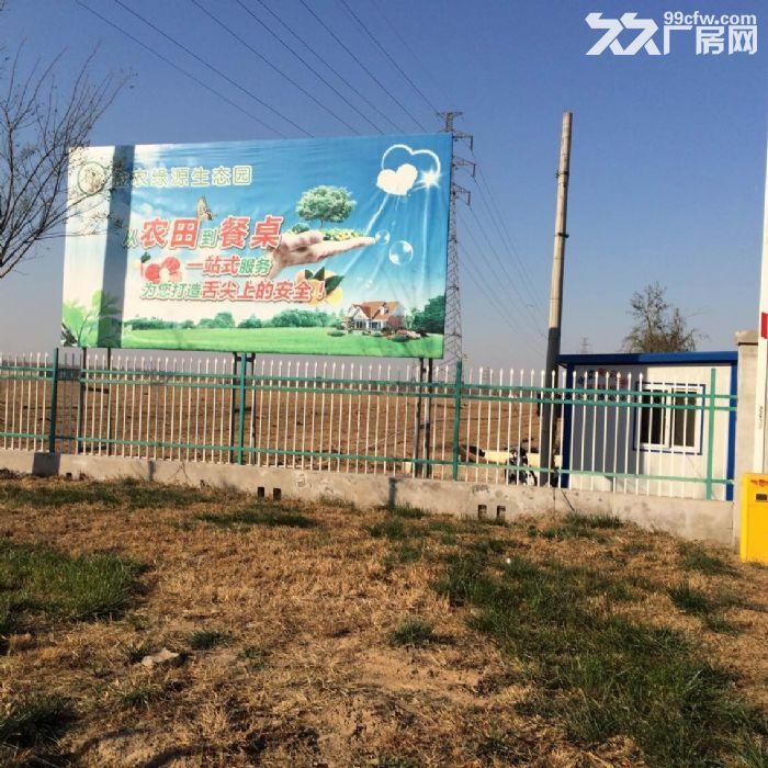王庆坨农业地1800亩天津农业地出售-图(4)