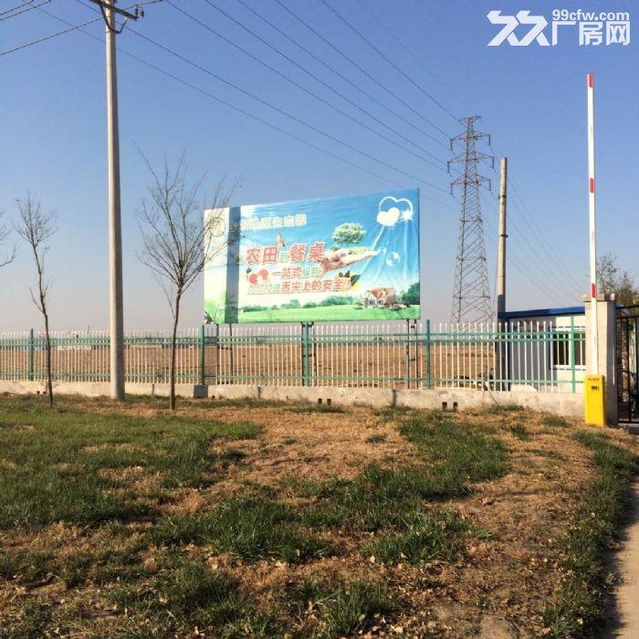 王庆坨农业地1800亩天津农业地出售-图(2)