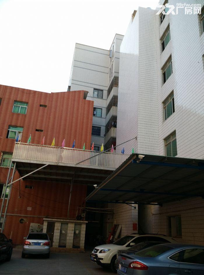 机场附近宸鸿科技围里个人房东一楼厂房出租!-图(5)