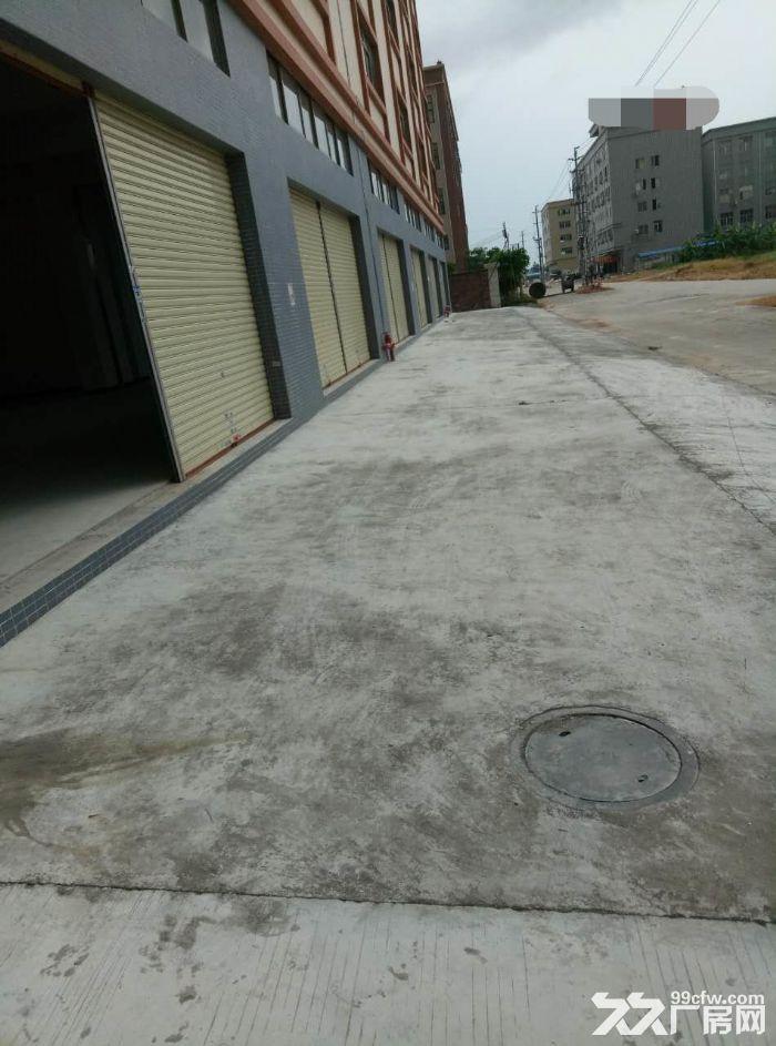 睦洲新沙可做喷涂或小污染1000方厂房招租-图(1)