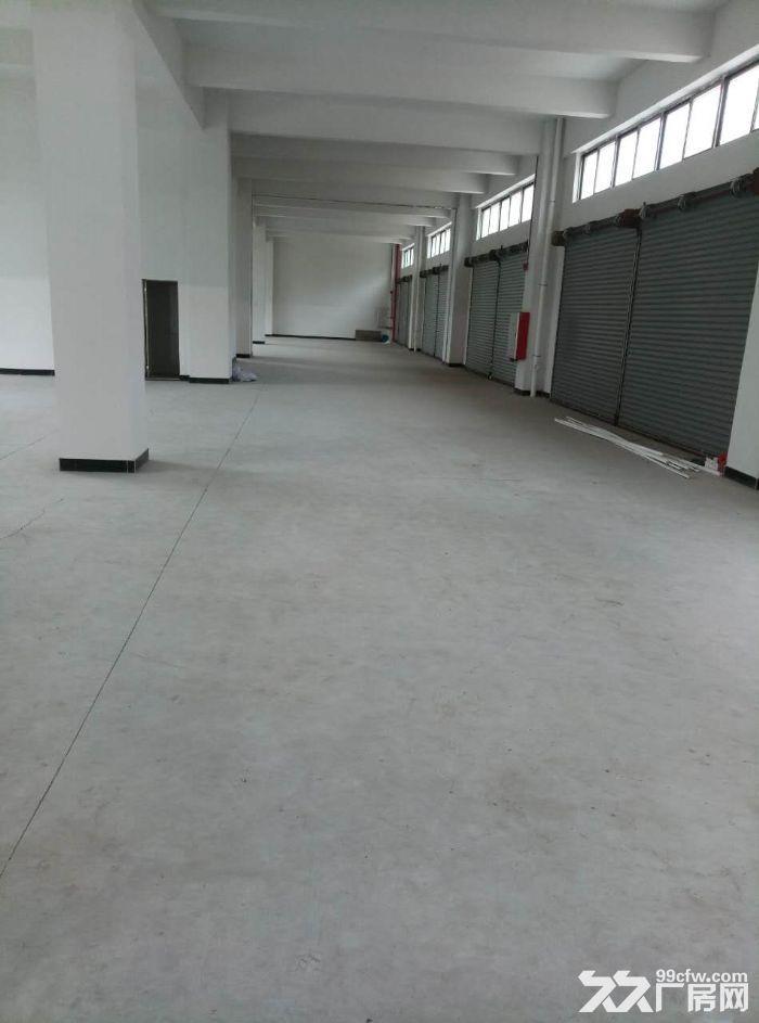睦洲新沙可做喷涂或小污染1000方厂房招租-图(3)