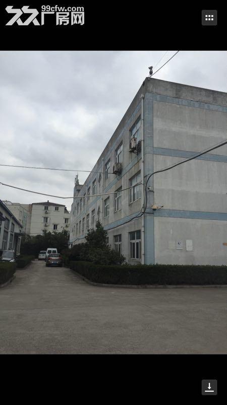 宝山罗泾潘川路沪太路17000平方米标准厂房(业主直租)-图(2)