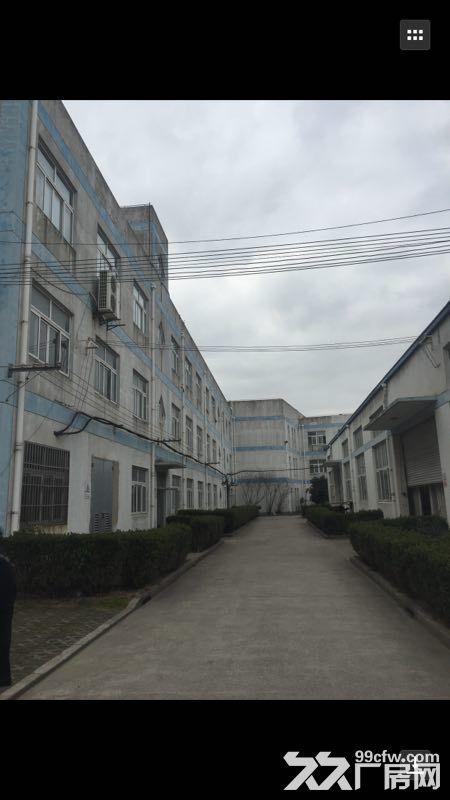 宝山罗泾潘川路沪太路17000平方米标准厂房(业主直租)-图(3)