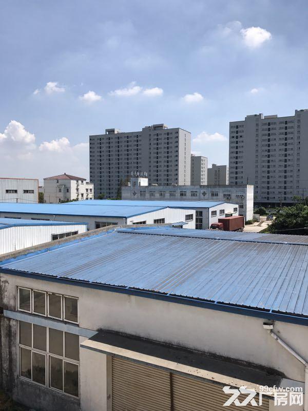 宝山罗泾潘川路沪太路17000平方米标准厂房(业主直租)-图(5)