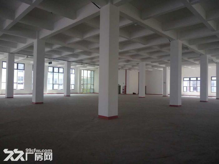 浦江高端园区楼上2200平6米层高优质仓储适家具等-图(2)