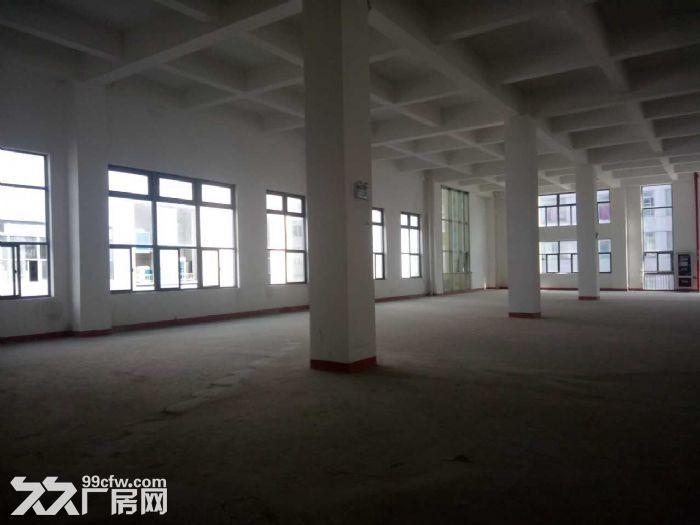 浦江高端园区楼上2200平6米层高优质仓储适家具等-图(1)