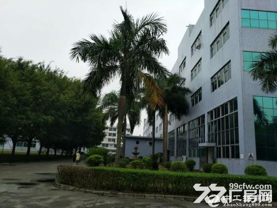 东莞长安镇占地36亩建筑38638平米国有证厂房-图(1)