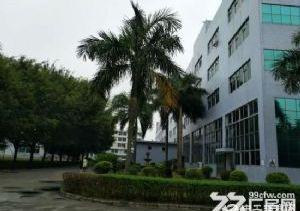 东莞长安镇占地36亩建筑38638平米国有证厂房