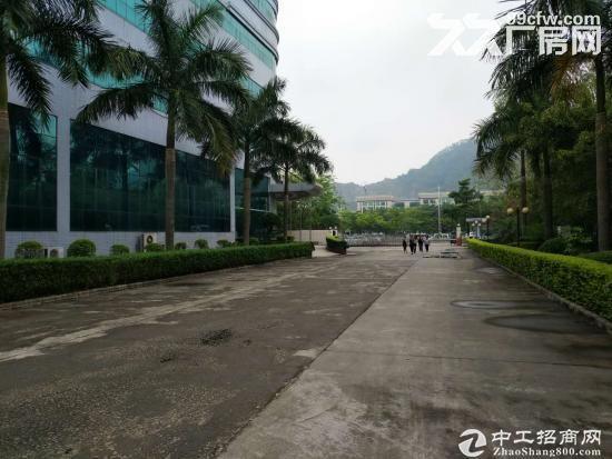 东莞长安镇占地36亩建筑38638平米国有证厂房-图(3)