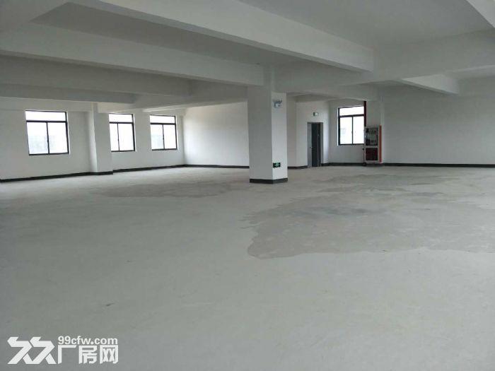 松江价格最低厂房,大房东直租,楼上大平层,园区内有食宿-图(2)