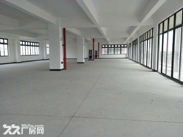 松江价格最低厂房,大房东直租,楼上大平层,园区内有食宿-图(6)
