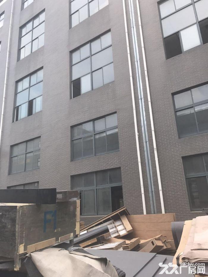 松江大房东直租,104地块,楼上大平层,大车可直接进货梯-图(7)