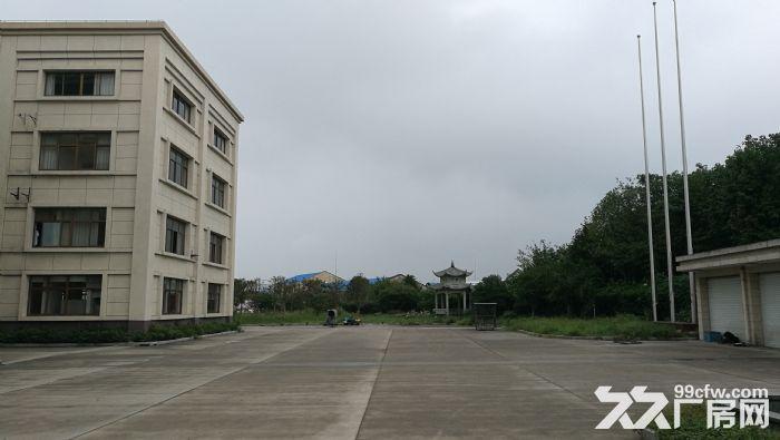 嘉定马陆镇花园厂房低价出租-图(2)