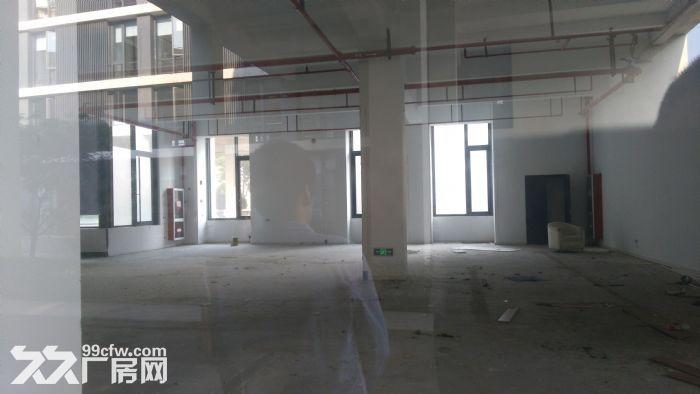 漕河泾稀有底楼500平研发厂房适智能软件科研检测-图(1)