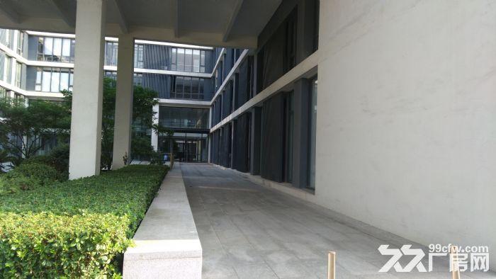 漕河泾稀有底楼500平研发厂房适智能软件科研检测-图(2)