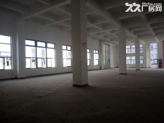 浦江近三鲁公路高端园区6米高优质楼上仓储适家具电子等-图(1)