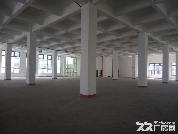浦江近三鲁公路高端园区6米高优质楼上仓储适家具电子等-图(2)